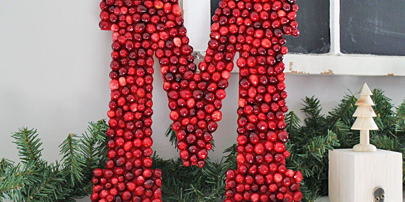 DIY Cranberry Monogram