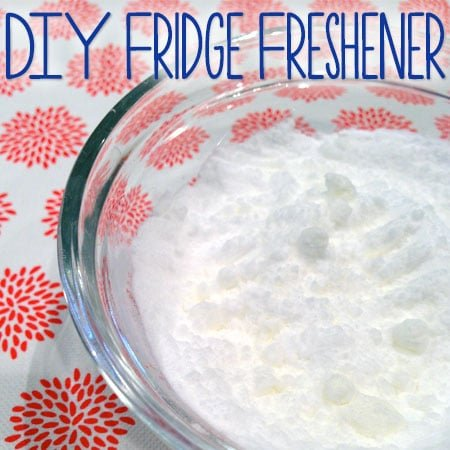 DIY Fridge Freshener