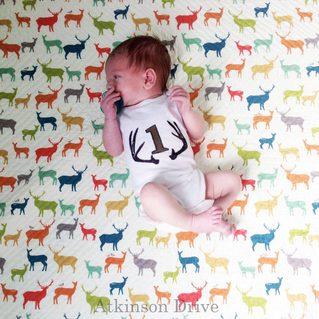 """DIY """"Month by Month"""" Infant Onesies (with a free download) 