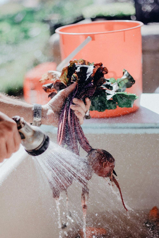 Homemade Produce Wash